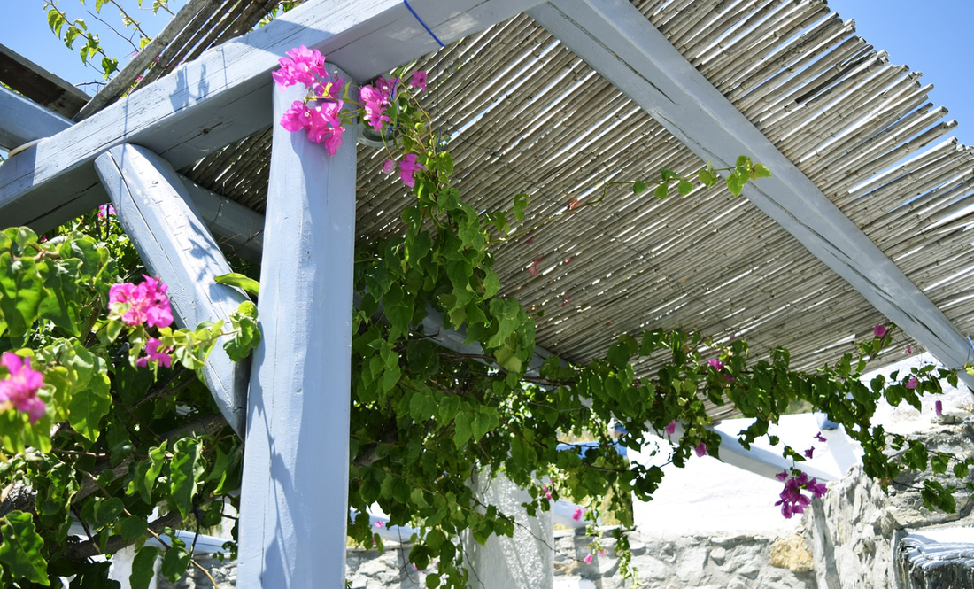 Choosing an Ideal Pergola for Your Garden